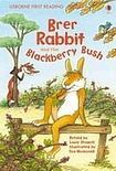 Usborne Publishing Usborne First Reading Level 2: Brer Rabbit and the Blackberry Bush cena od 123 Kč