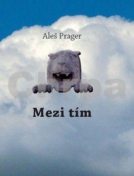 Aleš Prager: Mezi tím cena od 167 Kč