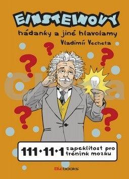 Vladimír Vecheta: Einsteinovy hádanky a jiné hlavolamy cena od 157 Kč