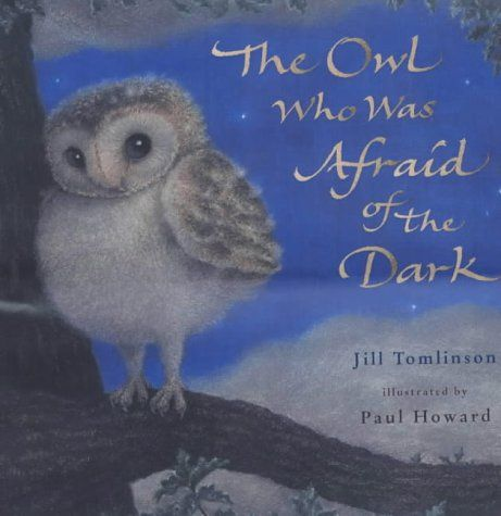 Owl Afraid of the Dark cena od 179 Kč