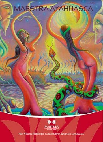 Viliam Poltikovič: Maestra ayahuasca - DVD cena od 125 Kč