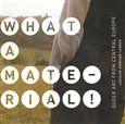 Ladislav Zikmund-Lender: What a Material! cena od 114 Kč