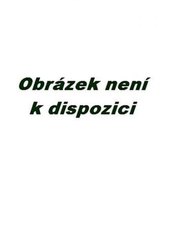Václav Budinský: Hlazení duše (v anglickém jazyce) cena od 126 Kč