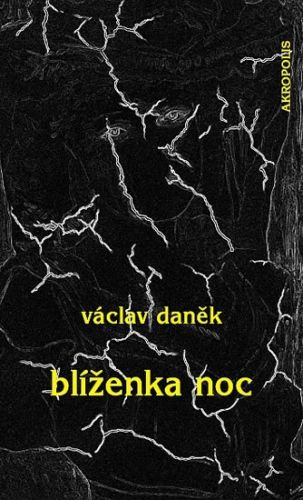 Václav Daněk: Blíženka Noc cena od 80 Kč