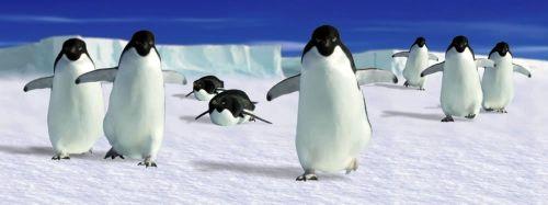 ABC Develop Záložka - Úžaska - Tučňáci cena od 74 Kč