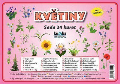Kupka a Petr: Květiny - Sada 24 karet cena od 44 Kč