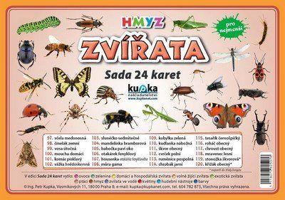Kupka a Petr: Zvířata hmyz - Sada 24 karet cena od 45 Kč