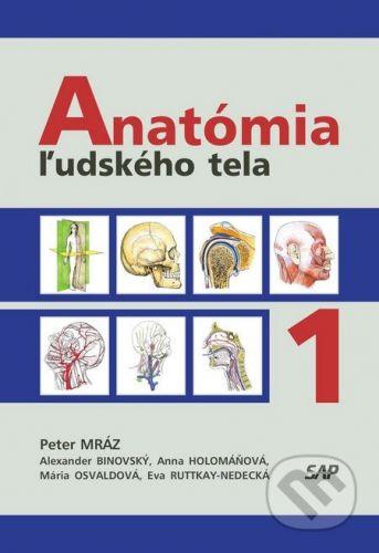 Slovak Academic Press Anatómia ľudského tela I. - Peter Mraz cena od 1576 Kč