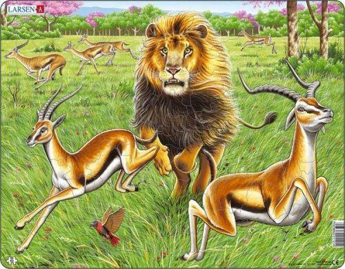 LARSEN Puzzle - Lev na lovu, 63 dílků