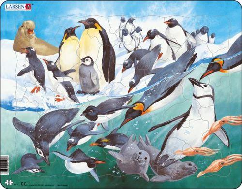 LARSEN Puzzle - Tučňáci, 50 dílků