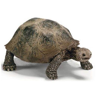 SCHLEICH obří želva 14601 cena od 97 Kč