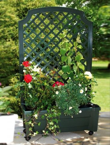 """OEM Truhlík na rostliny se zavlažovacím systémem se špalírem a kolečky """"Calypso"""""""