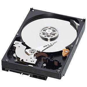 WESTERN DIGITAL HDD 1TB WD10EZEX 64 MB