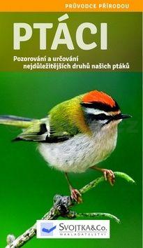 Angelika Lang: Ptáci - Pozorování a určování nejdůležitějších druhů našich ptáků cena od 194 Kč