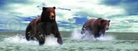 Záložka Úžaska Grizly cena od 73 Kč