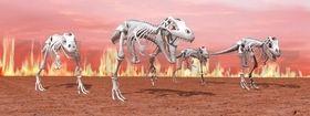 Záložka Úžaska T-Rex cena od 74 Kč