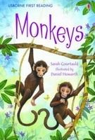 Usborne Publishing USBORNE FIRST READING LEVEL 3: MONKEYS - COURTAULD, S., HOWA... cena od 123 Kč