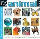 Pan Macmillan MY BIG ANIMAL WORLD - TAYLOR, B. cena od 388 Kč