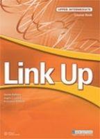 Heinle ELT LINK UP UPPER INTERMEDIATE WORKBOOK - ADAMS, D., CRAWFORD, M... cena od 340 Kč