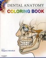 Elsevier Ltd Dental Anatomy Coloring Book cena od 716 Kč