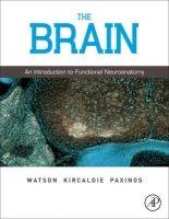 Elsevier Ltd Brain - Watson, Ch., Kirkcaldie, M., Paxinos, G. cena od 1385 Kč