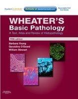 Elsevier Ltd Wheater´s Basic Pathology - Young, B., Stewart, W., O´Dowd, ... cena od 1552 Kč