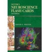 Elsevier Ltd Netter´s Neuroscience Flash Cards - Felten, D.L. cena od 950 Kč