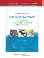 NBN International Ltd Neuroanatomy (Haines) cena od 1210 Kč