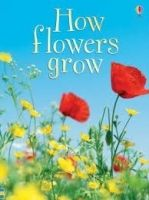 Usborne Publishing USBORNE BEGINNERS: HOW FLOWERS GROW - HELBROUGH, E. cena od 163 Kč