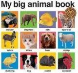 Pan Macmillan MY BIG ANIMAL BOOK - PRIDDY, R. cena od 165 Kč