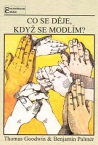 Goodwin T., Palmer B.: Co se děje, když se modlím? cena od 76 Kč