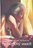 Dilgo Khjence Rinpočhe: Nebojácný soucit cena od 202 Kč