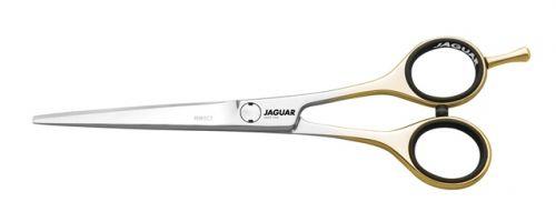 Jaguar Solingen 0155