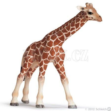 Schleich Žirafa mládě 14321 cena od 99 Kč