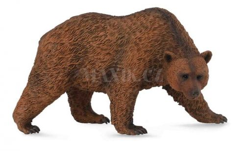 Collecta Medvěd hnědý cena od 90 Kč