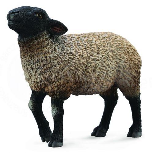 Collecta Ovce Suffolk cena od 79 Kč