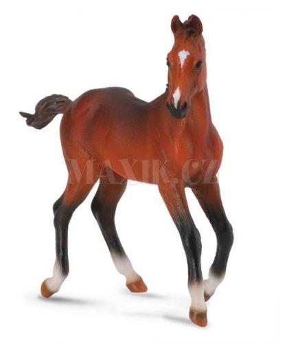 Collecta Quarter horse hříbě cena od 59 Kč