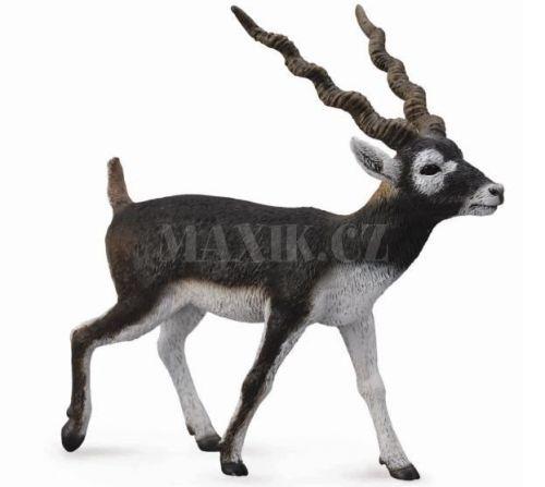 Collecta Antilopa jelení cena od 89 Kč