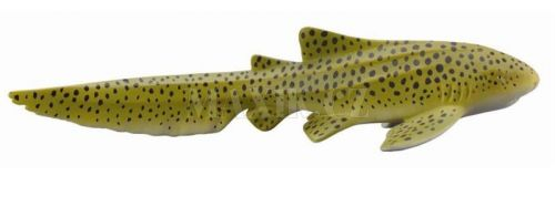 Collecta Žralok zebrovitý cena od 52 Kč