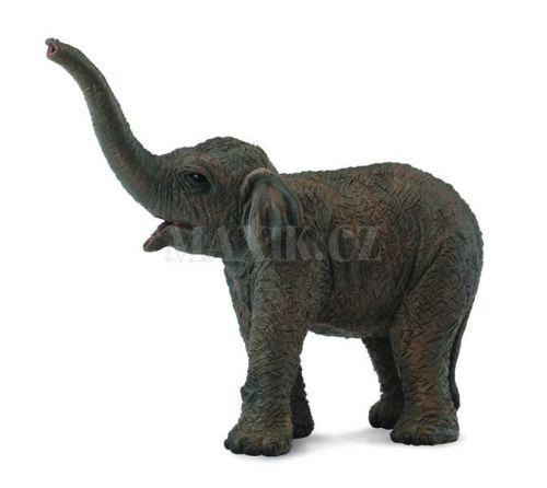 Collecta Slon asijský slůně cena od 53 Kč