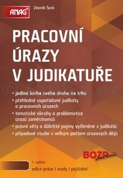 Zdeněk Šenk: Pracovní úrazy v judikatuře cena od 342 Kč