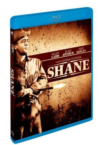 Shane BD