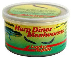 Lucky Reptile Herp Diner mouční červi 35 g