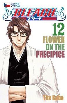 Noriaki Kubo: Bleach 12: Flower on the Precipice cena od 128 Kč