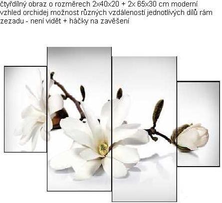 EVK orchidej čtyřdílný obraz