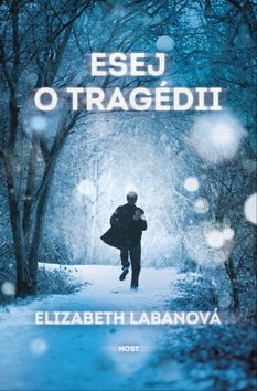 Elizabeth LaBan: Esej o tragédii cena od 119 Kč