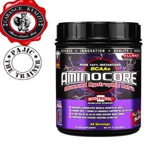 Allmax Aminocore 400 g
