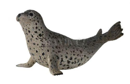Collecta Tuleň Pacifický cena od 95 Kč