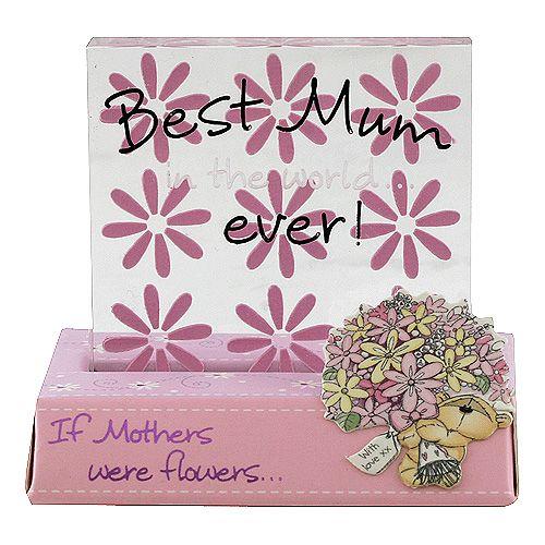 Fizzy Moon Best Mum ever! cena od 0 Kč
