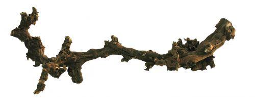 Lucky Reptile Grapevine 50-70 cm